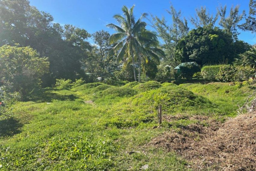 terrain a vendre atike immobilier agence tahiti