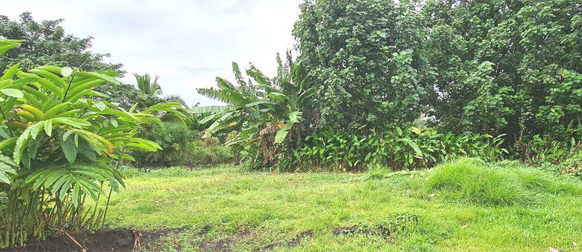 terrain vente atike immobilier tahiti agence immobiliere